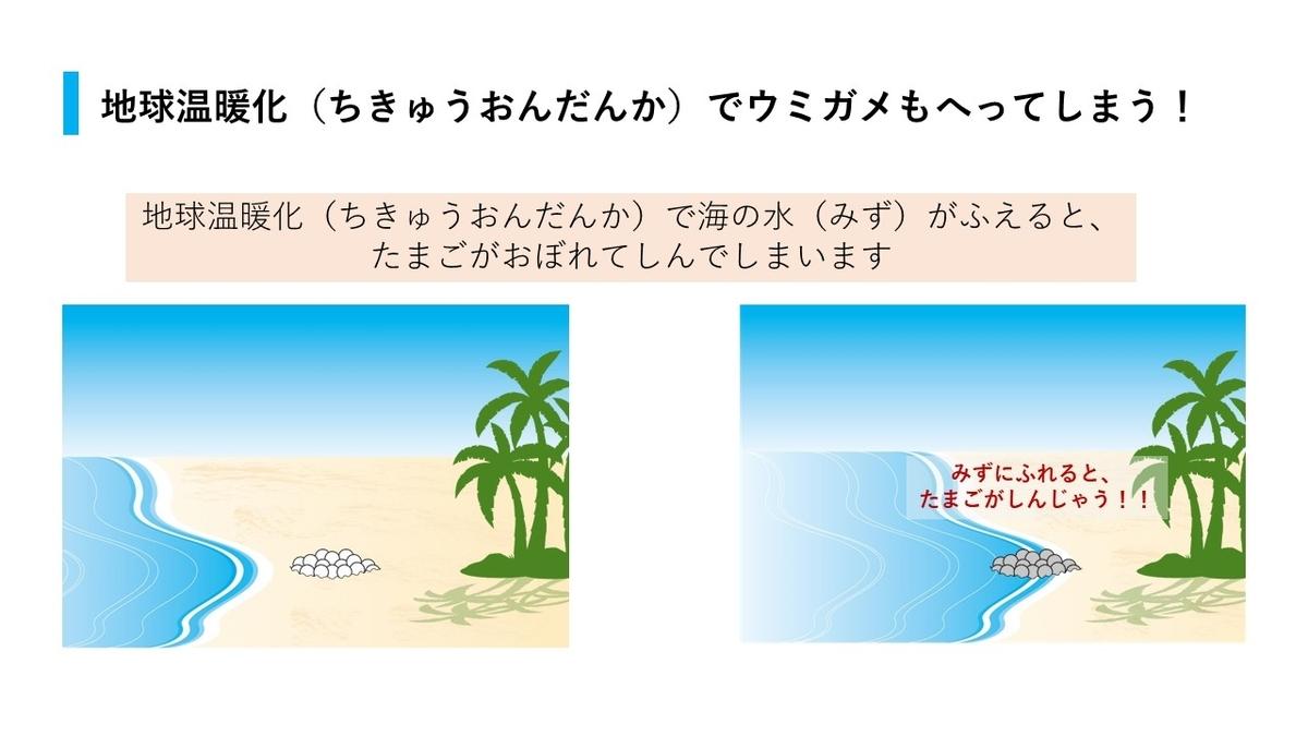 温暖化による海水面上昇で卵が腐ってしまう可能性も