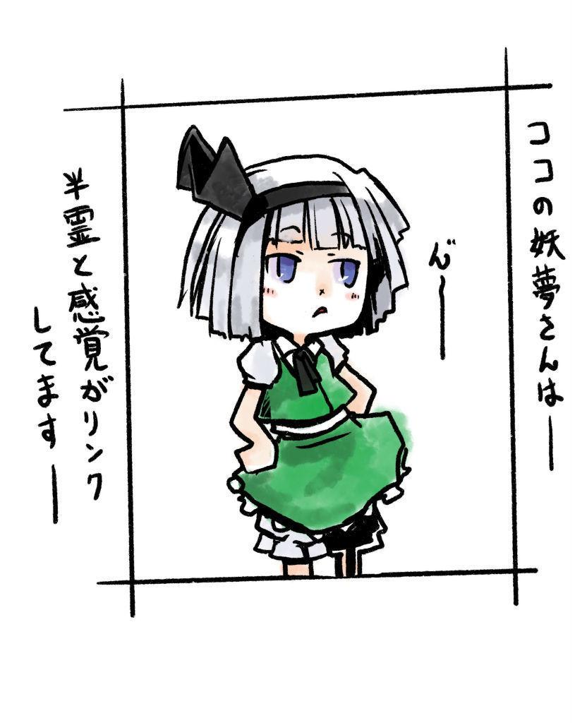 魂魄妖夢 東方project 庭師