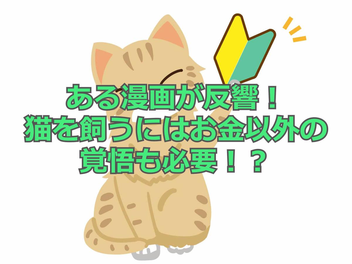 f:id:aniki-ken:20201013170501j:plain