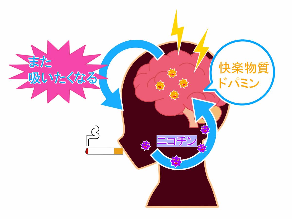 f:id:aniki-ken:20201023192846j:plain