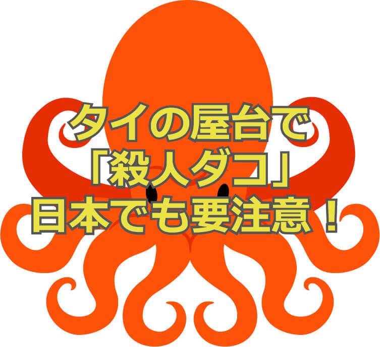 f:id:aniki-ken:20201202214229j:plain
