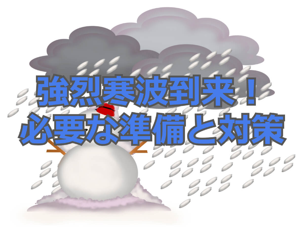 f:id:aniki-ken:20210109004119j:plain