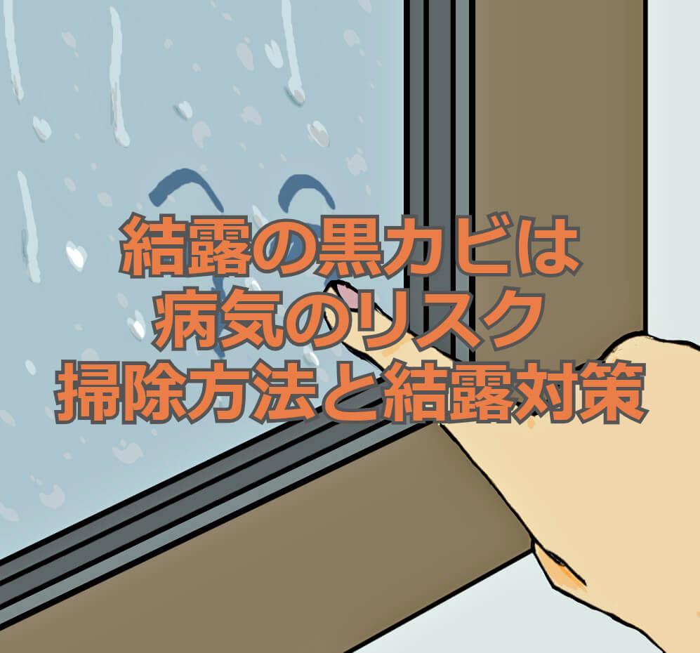f:id:aniki-ken:20210113010359j:plain
