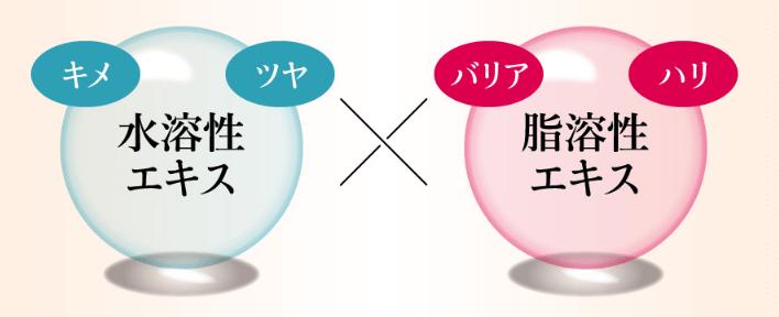 f:id:aniki-ken:20210118015239p:plain