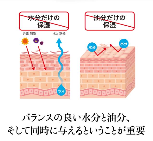 f:id:aniki-ken:20210118015823p:plain