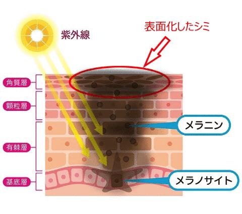 f:id:aniki-ken:20210201020737p:plain