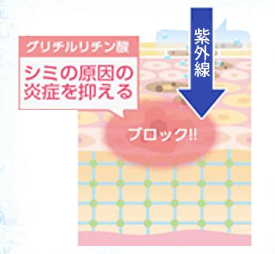 f:id:aniki-ken:20210201021924p:plain