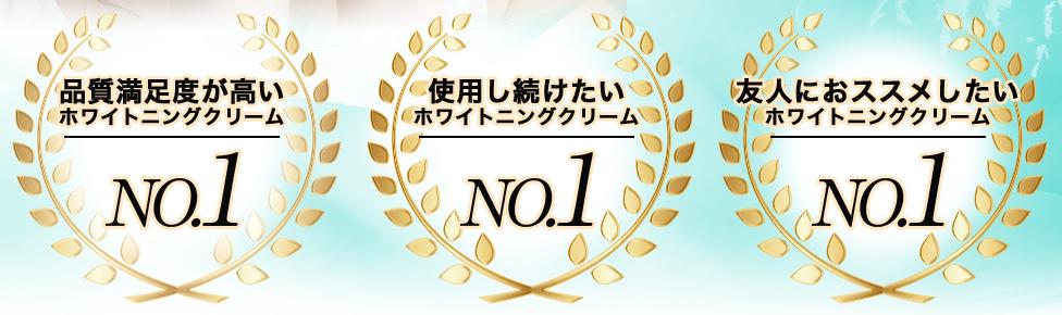 f:id:aniki-ken:20210201022413p:plain