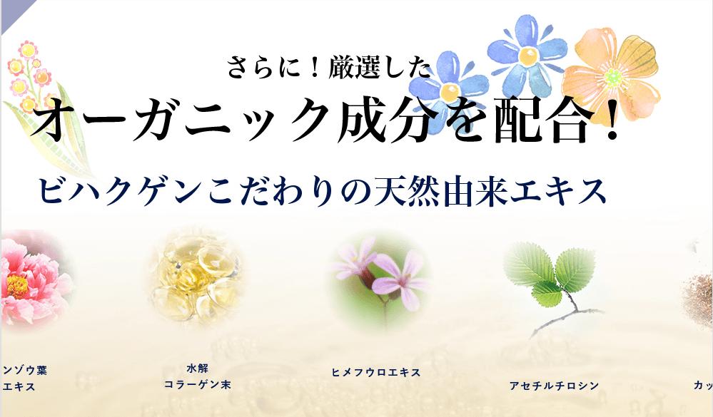 f:id:aniki-ken:20210201023839p:plain