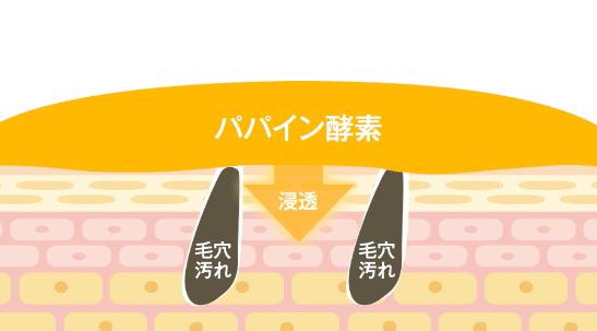 f:id:aniki-ken:20210209011035p:plain