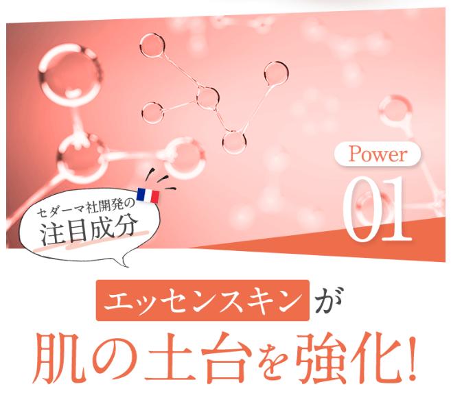 f:id:aniki-ken:20210218160113p:plain