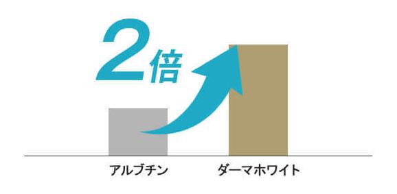 f:id:aniki-ken:20210318171628p:plain