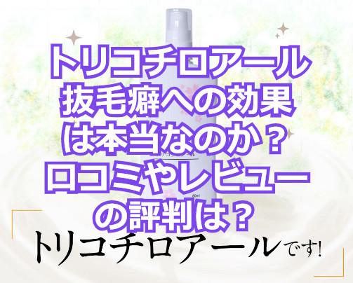 f:id:aniki-ken:20210322164536j:plain