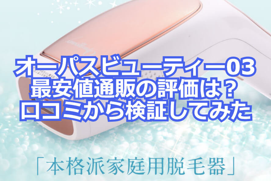 f:id:aniki-ken:20210329164216j:plain