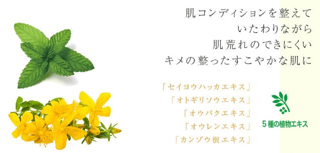和漢5種の植物エキス