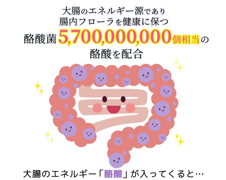 ラクサンは酪酸57億個を配合