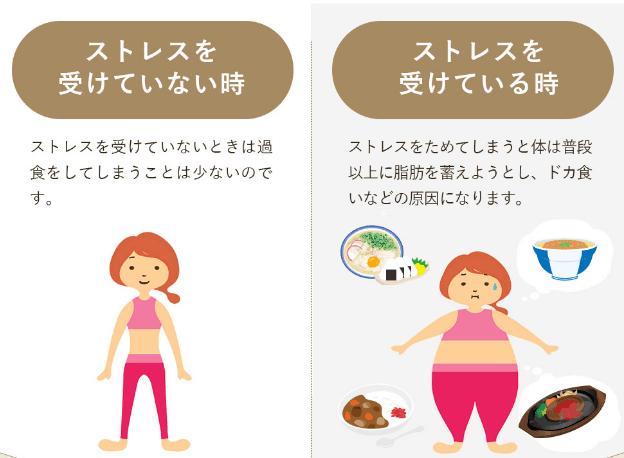 ストレスとダイエットの関係
