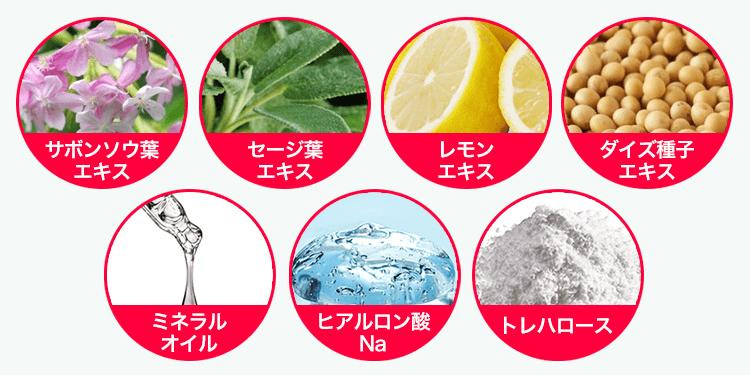 ヴェルデアロマシャンプー&コンディショナーの植物由来成分