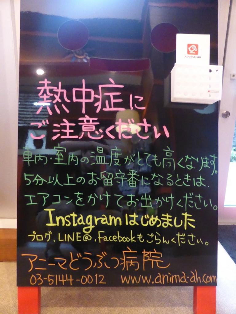f:id:anima-ah:20170704095854j:plain