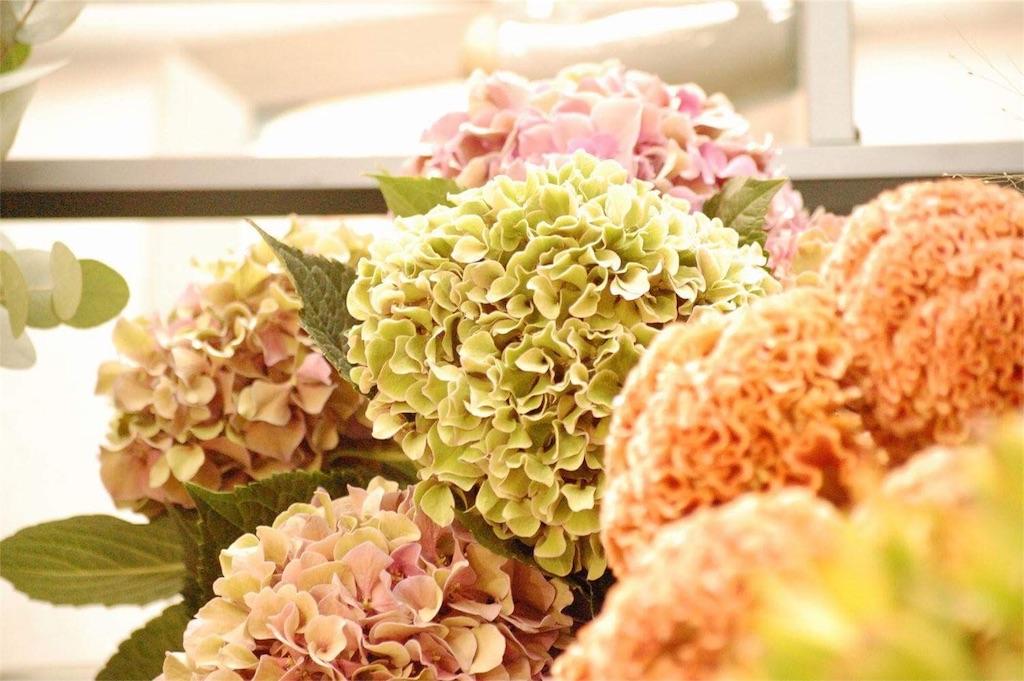 f:id:anima-florist:20160910072845j:image