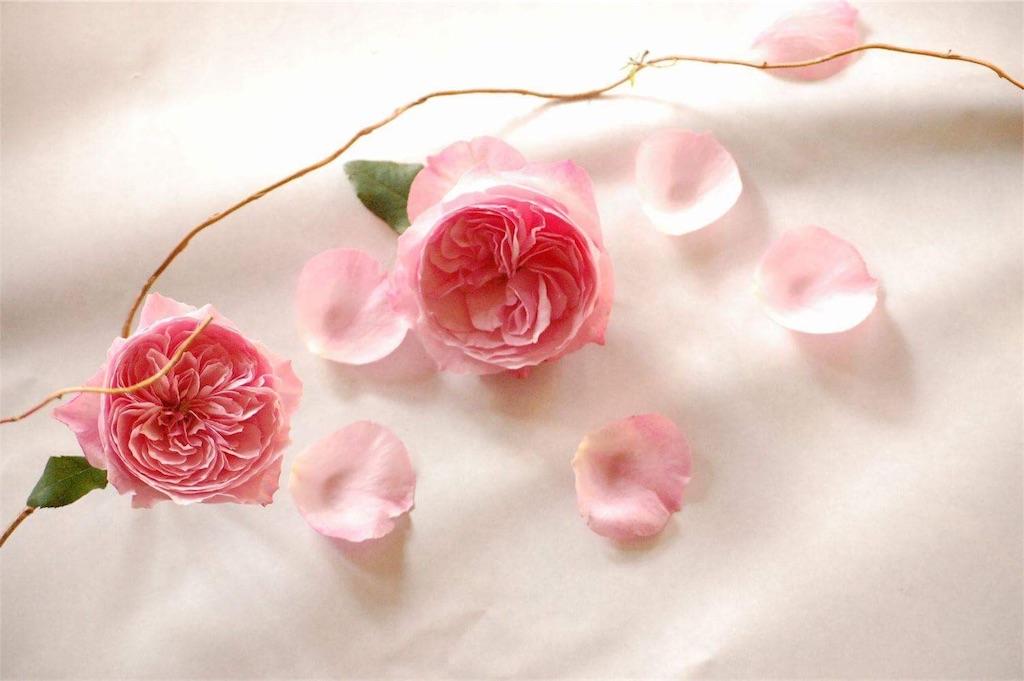 f:id:anima-florist:20161022072027j:image