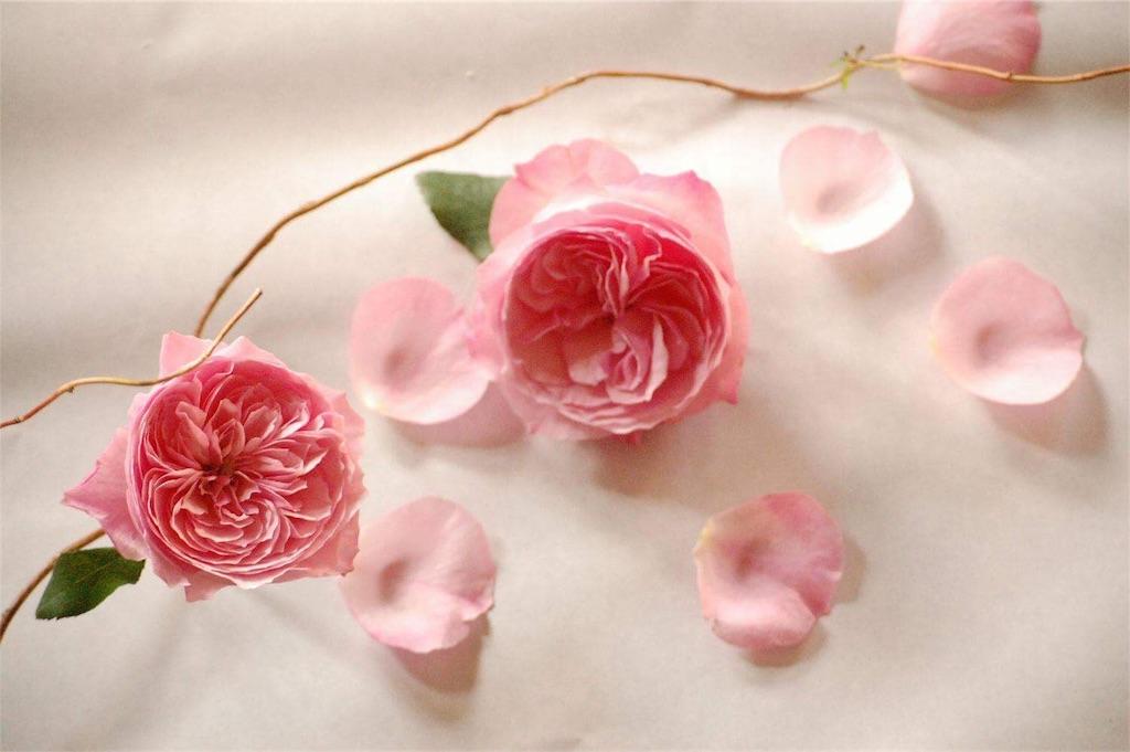 f:id:anima-florist:20161022072049j:image
