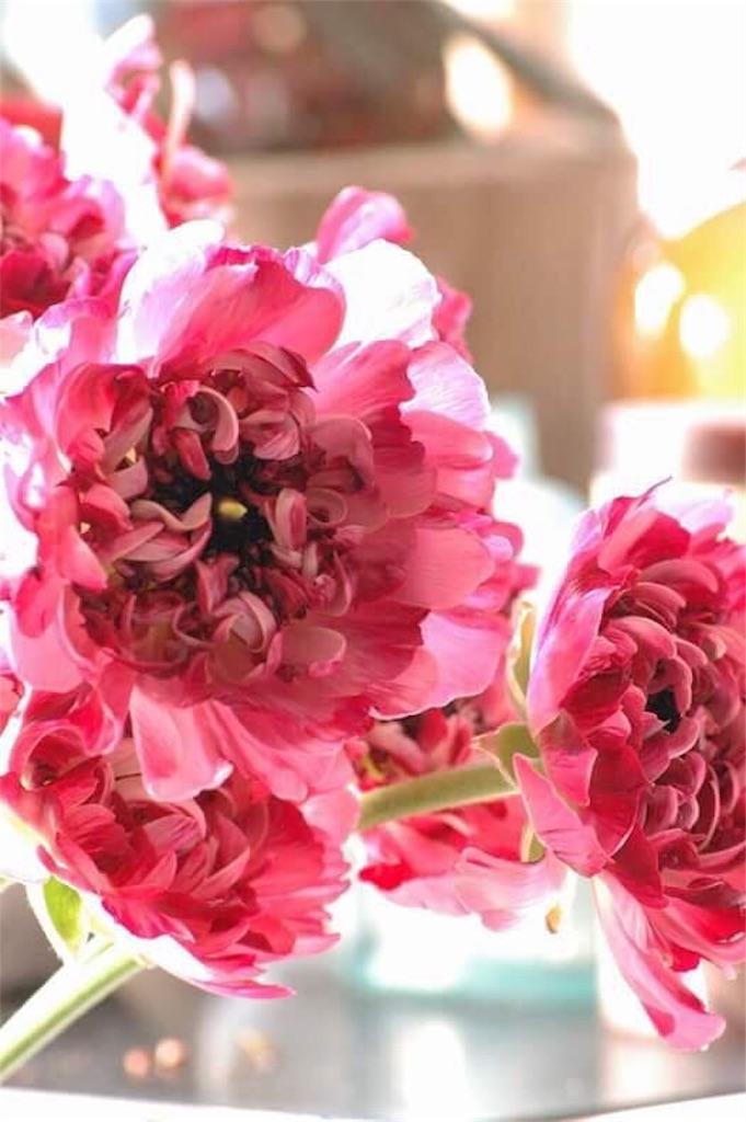 f:id:anima-florist:20170108210803j:image