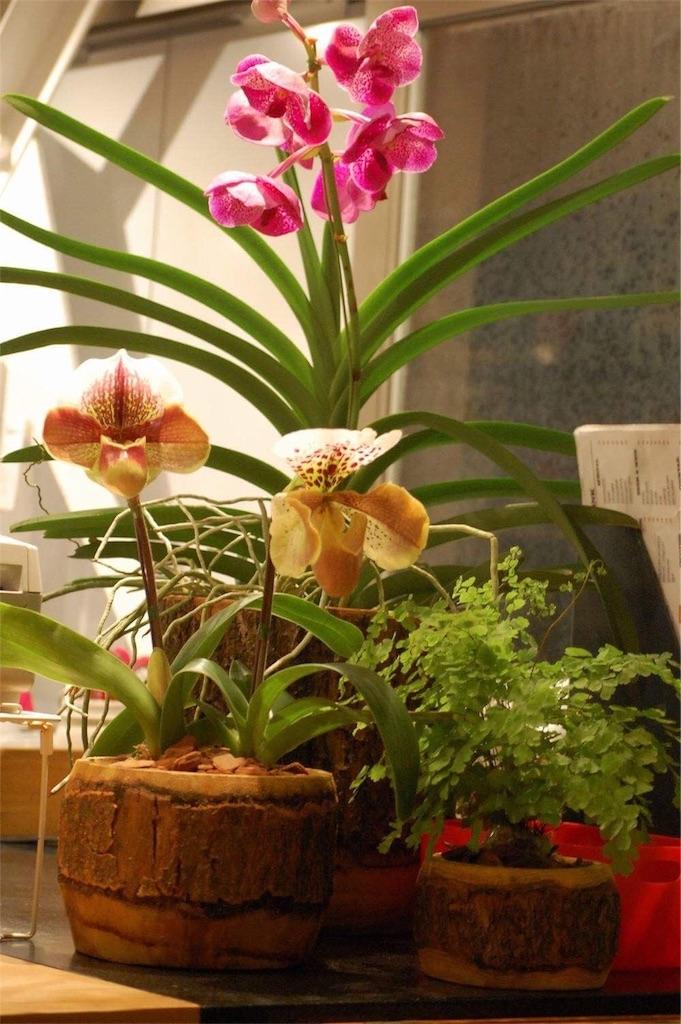 f:id:anima-florist:20170410101143j:image