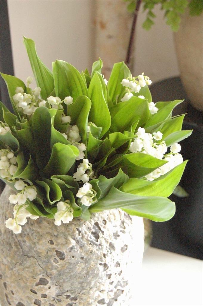f:id:anima-florist:20170501215628j:image