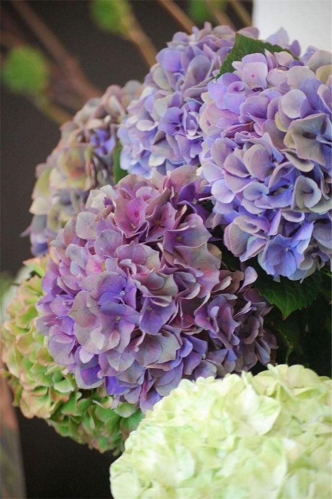 f:id:anima-florist:20170904203808j:image