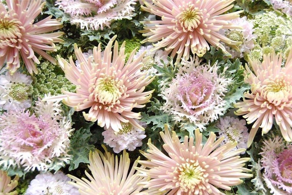 f:id:anima-florist:20180102001147j:image