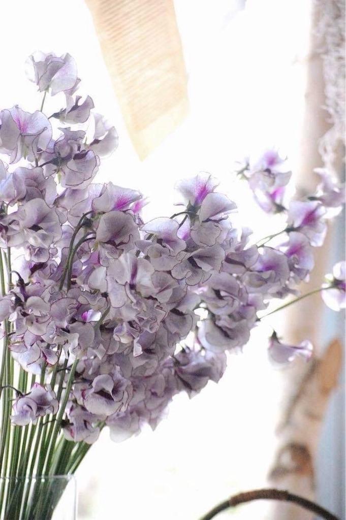 f:id:anima-florist:20180214170305j:image