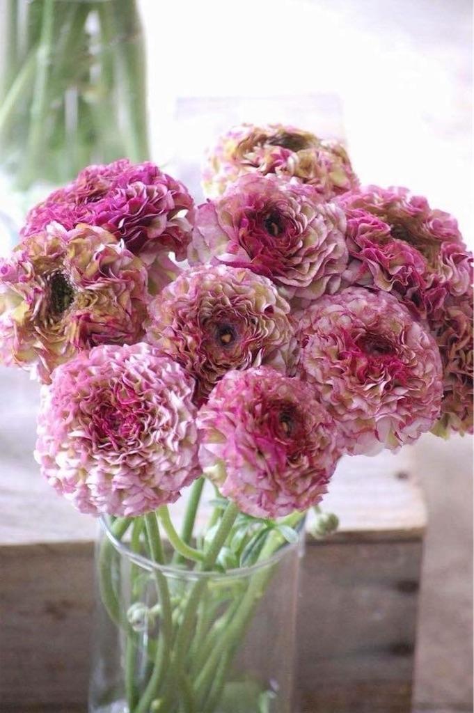 f:id:anima-florist:20180223123458j:image