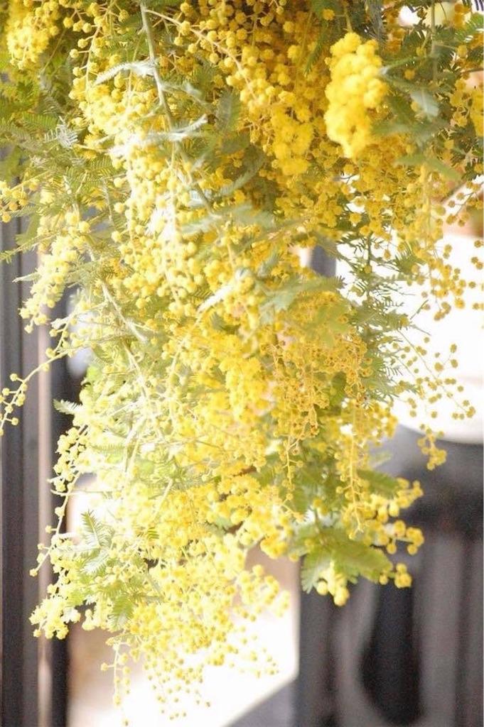 f:id:anima-florist:20180310105144j:image