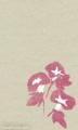 [イラスト][携帯待受][アサガオ]「夏のイラスト(朝顔)」携帯待受240x400