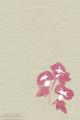 [イラスト][携帯待受][アサガオ]「夏のイラスト(朝顔)」携帯待受320x480(iphone用)