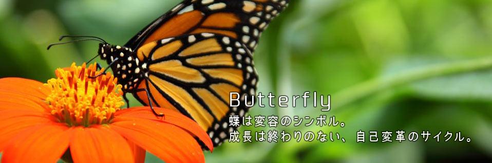 f:id:animandala:20170515095018j:plain