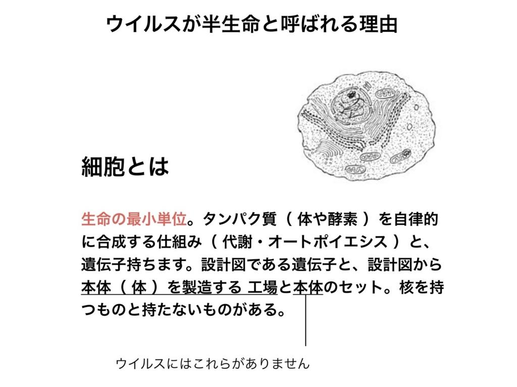 f:id:animandala:20180130085332j:plain