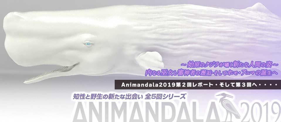 f:id:animandala:20190822061025j:plain