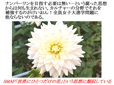f:id:aniotahosyu:20100921135151j:image