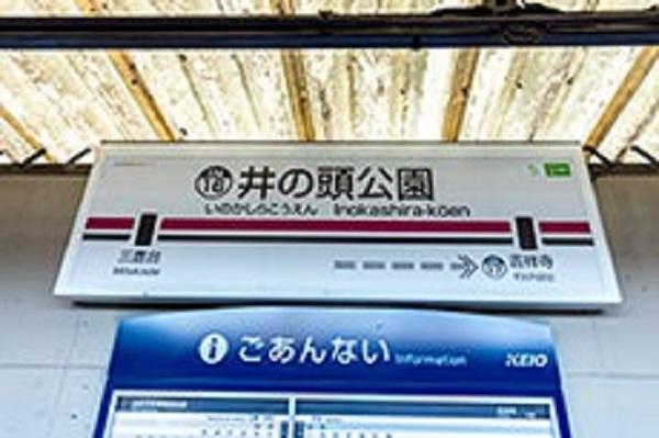 f:id:anisawagi:20180317230456j:plain