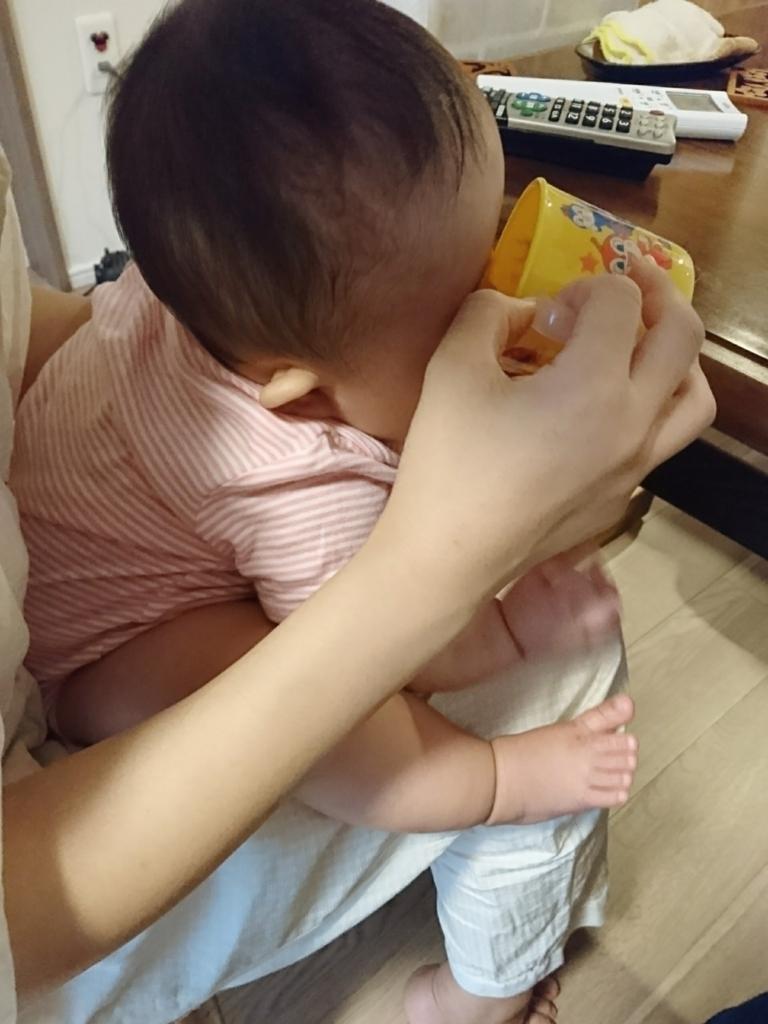 f:id:ankojirushi:20170803120721j:plain