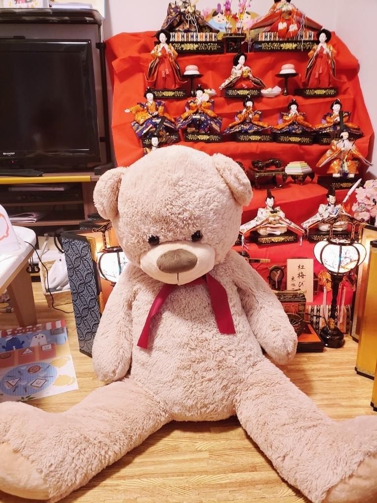 f:id:ankojirushi:20190304225416j:plain