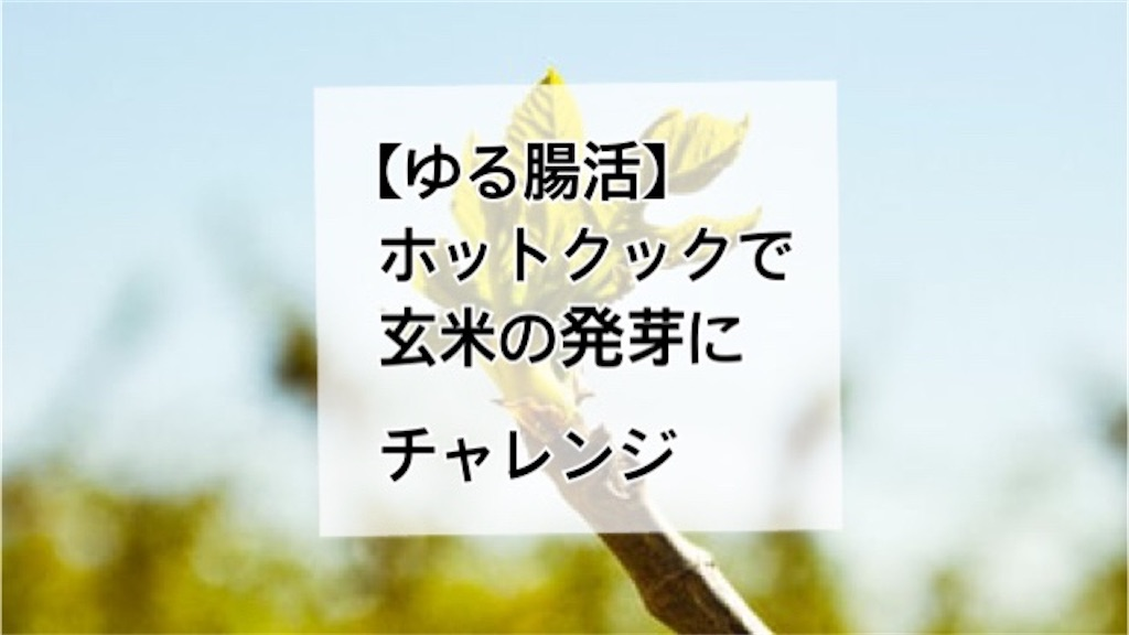 f:id:ann360days:20210605193933j:image