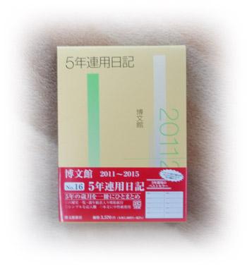 20101101213109