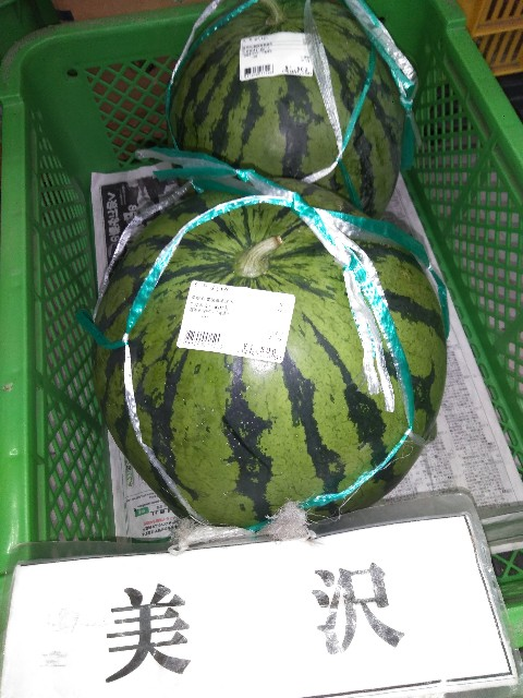 f:id:annei-aikid-touon-kawauti:20200730211152j:image