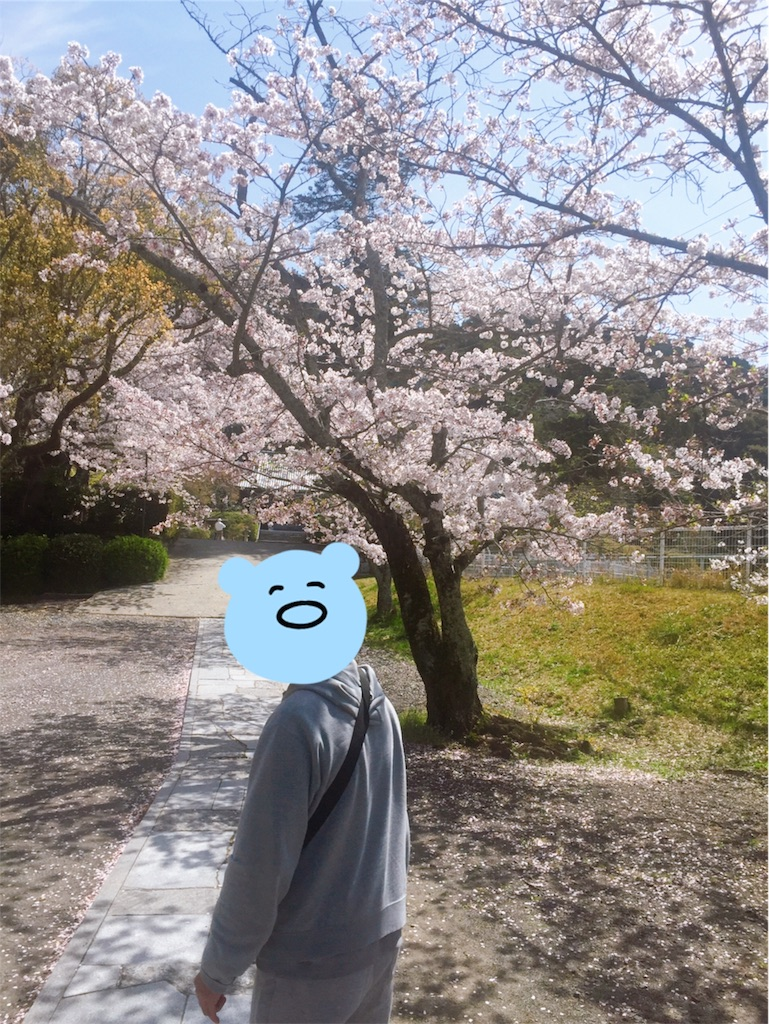 f:id:annei-aikid-touon-kawauti:20210401214148j:image
