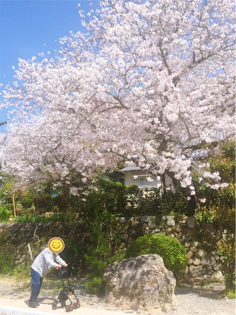 f:id:annei-aikid-touon-kawauti:20210401214208j:image