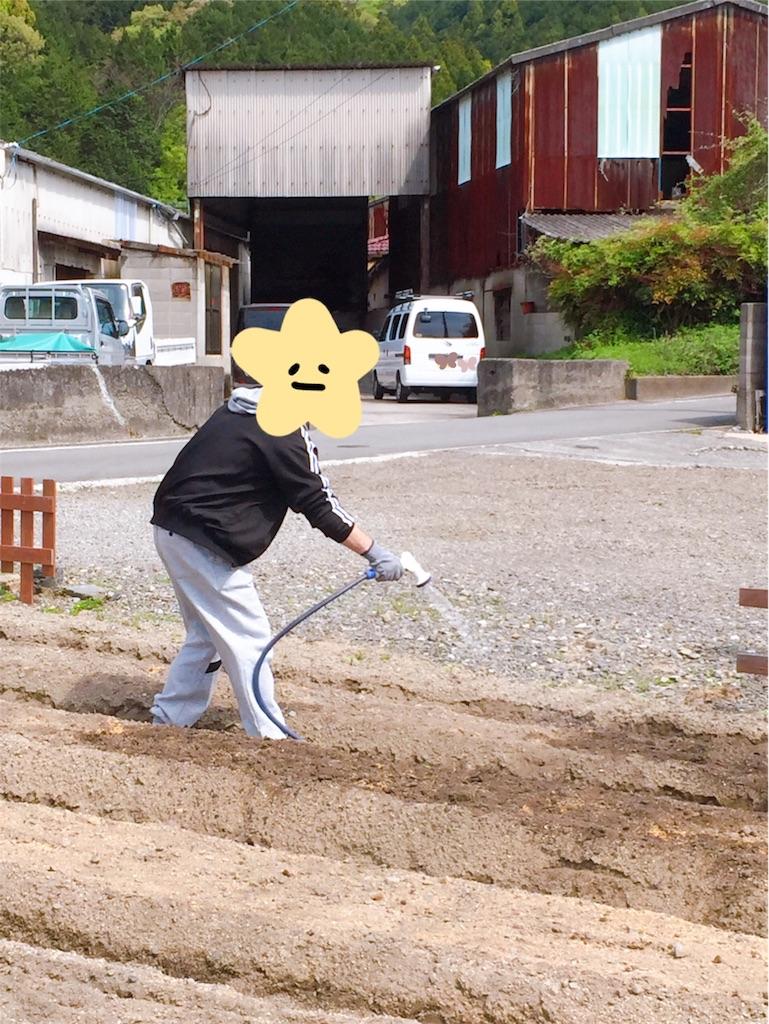 f:id:annei-aikid-touon-kawauti:20210408204740j:image