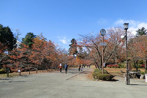 上田城跡公園ランニング
